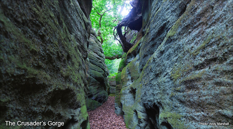 Plumpton Rocks - The Crusader's Gorge